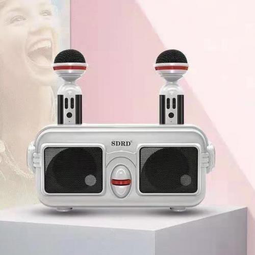 Караоке система для детей с двумя микрофонами SDRD SD-304 оптом